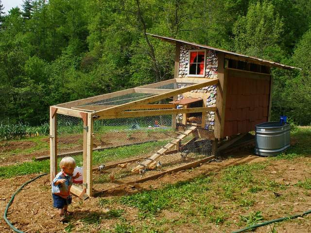 Best ideas about DIY Chicken Coops . Save or Pin Homemade Chicken Coop with Beer Can Shingles Was Built in Now.