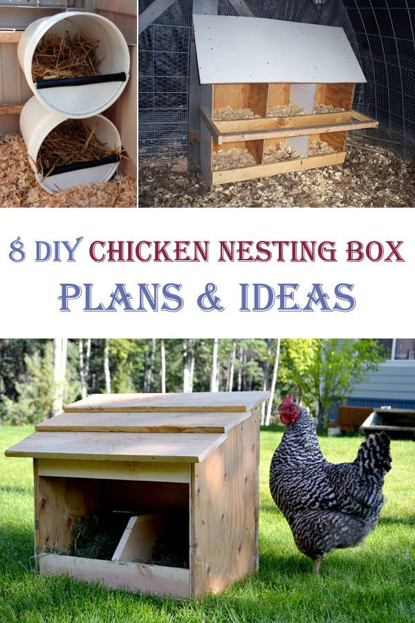 Best ideas about DIY Chicken Nest Boxes . Save or Pin 25 best ideas about Chicken nesting boxes on Pinterest Now.