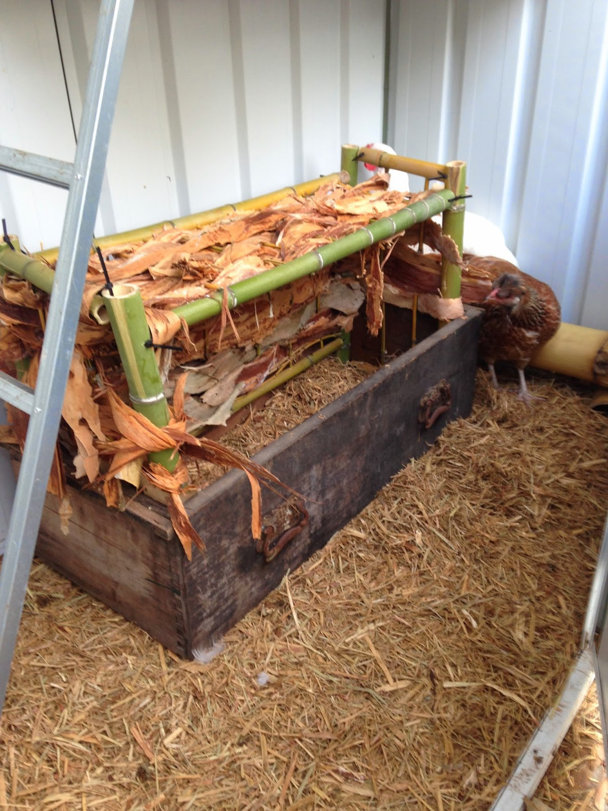 Best ideas about DIY Chicken Nest Boxes . Save or Pin This Small Town Life Backyard DIY Part 3 Chicken Nesting Box Now.