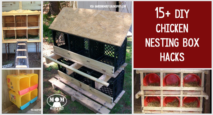 Best ideas about DIY Chicken Nest Boxes . Save or Pin 15 Chicken Nesting Box Hacks Mom with a PREP Now.