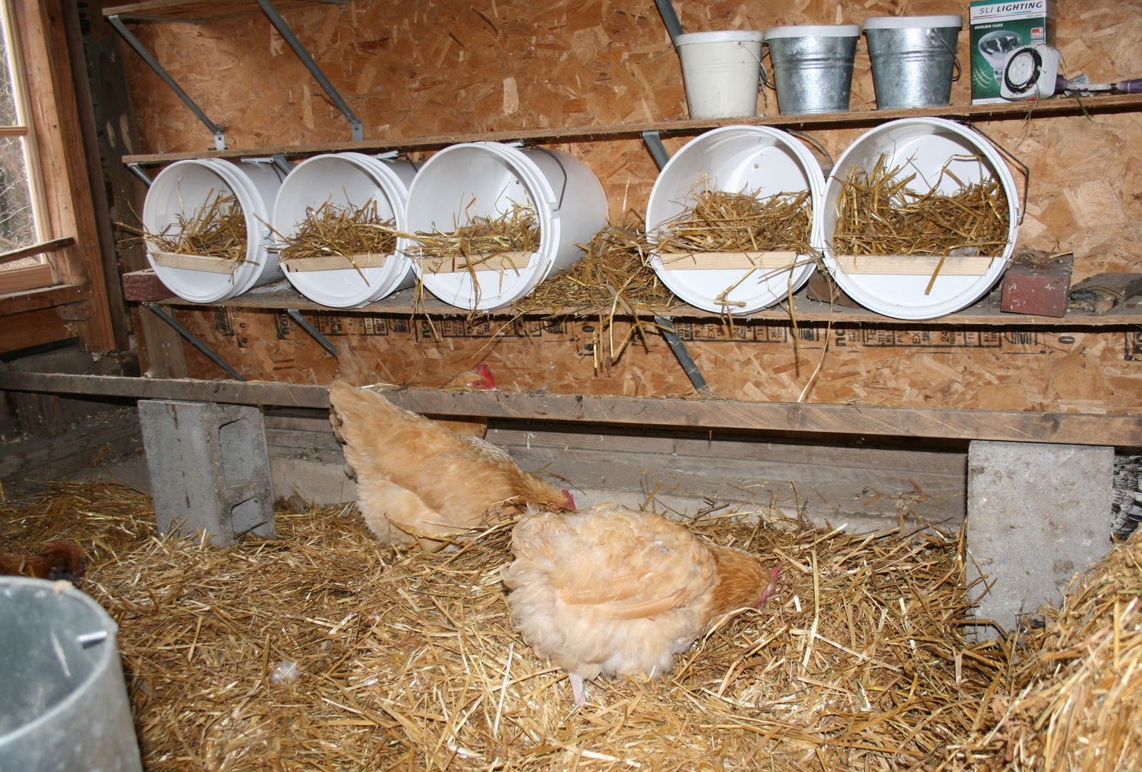 Best ideas about DIY Chicken Nest Boxes . Save or Pin Bucket o Chicken Now.
