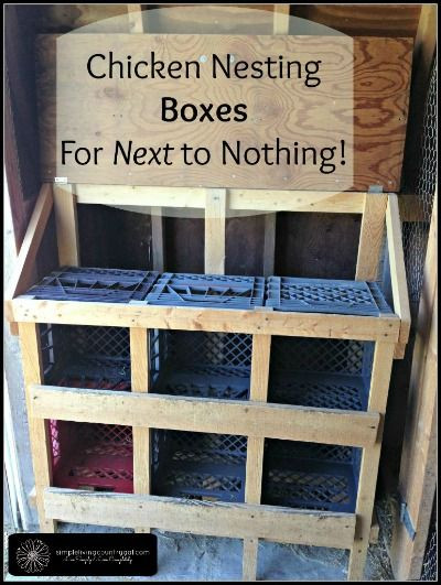 Best ideas about DIY Chicken Nest Boxes . Save or Pin Best 25 Chicken nesting boxes ideas on Pinterest Now.