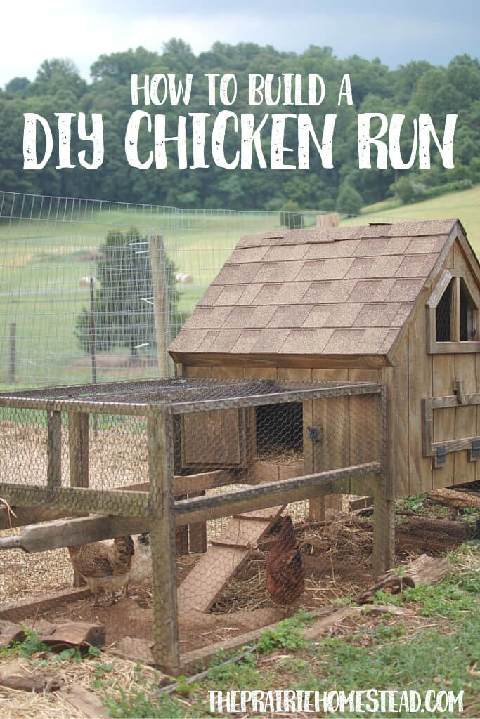 Best ideas about DIY Chicken Run . Save or Pin How to Build a Chicken Run • The Prairie Homestead Now.