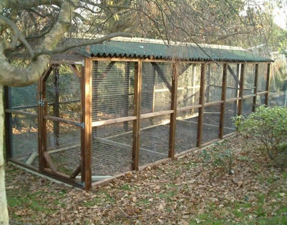 Best ideas about DIY Chicken Run . Save or Pin Easy to Build Chicken Coops Now.