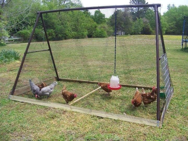 Best ideas about DIY Chicken Run . Save or Pin Chicken Coops Now.