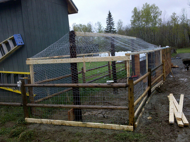 Best ideas about DIY Chicken Run . Save or Pin DIY Chicken Coop TheHomesteadingBoards Now.