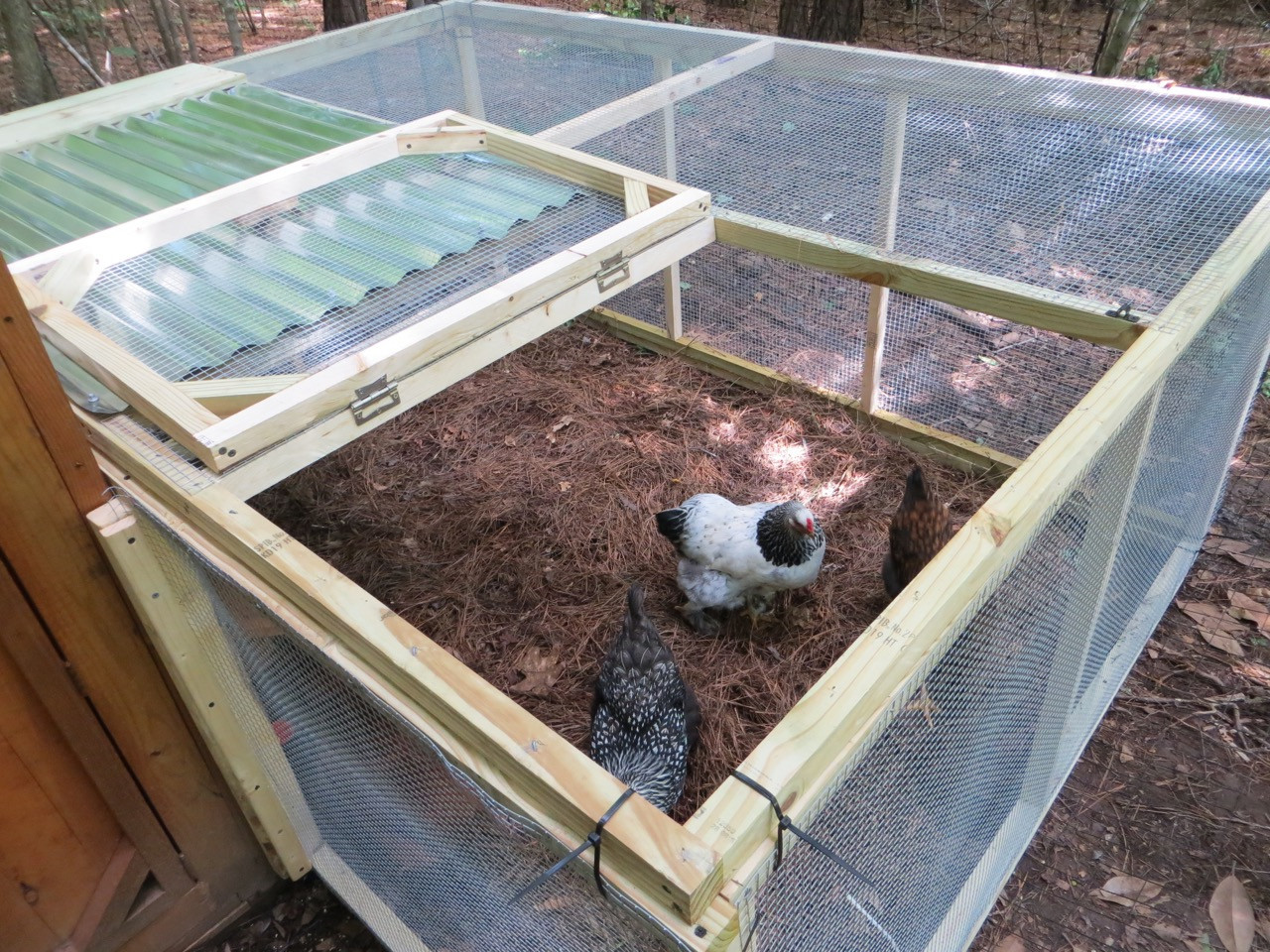 Best ideas about DIY Chicken Run . Save or Pin The Project Lady DIY Easy & Inexpensive Chicken Run Now.