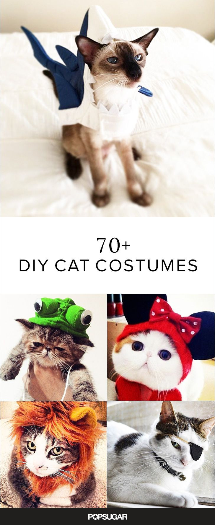 Best ideas about DIY Costume For Cats . Save or Pin 17 Best ideas about Diy Cat Costume on Pinterest Now.