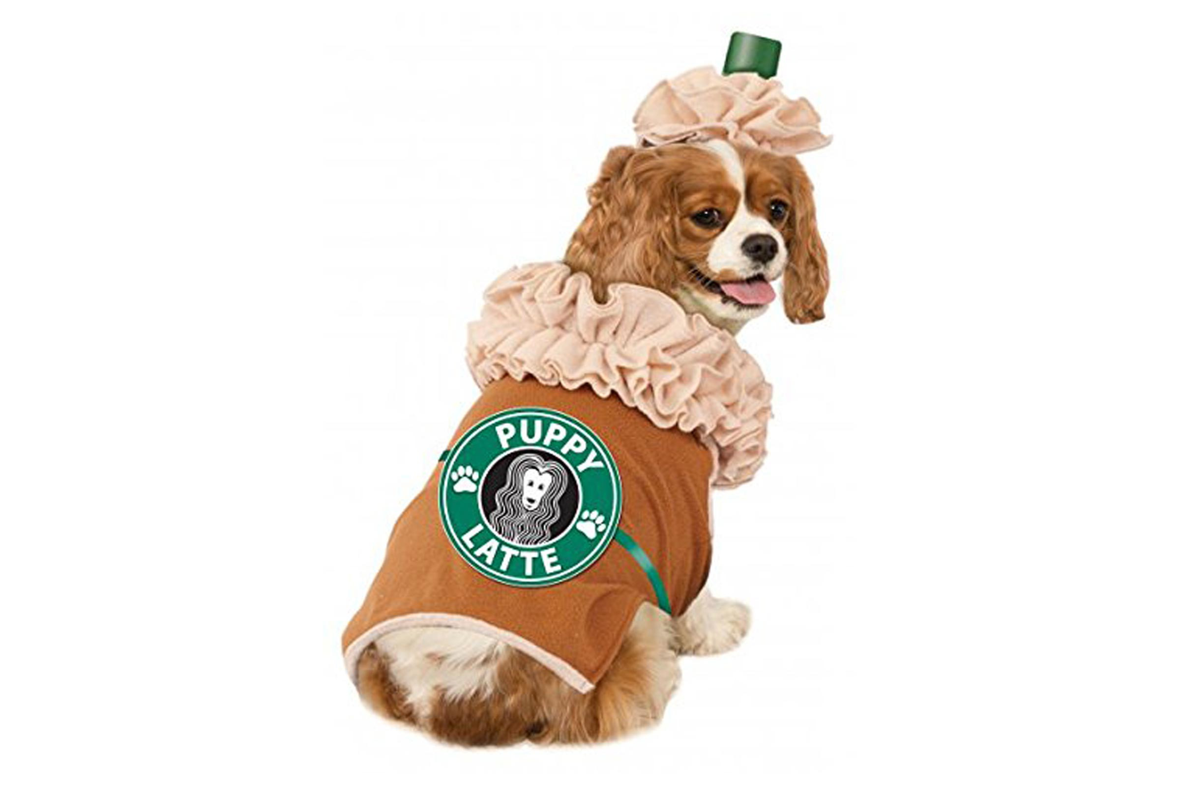 Best ideas about DIY Costumes For Dogs . Save or Pin Dog Halloween Costumes Best Halloween Costumes for Dogs Now.