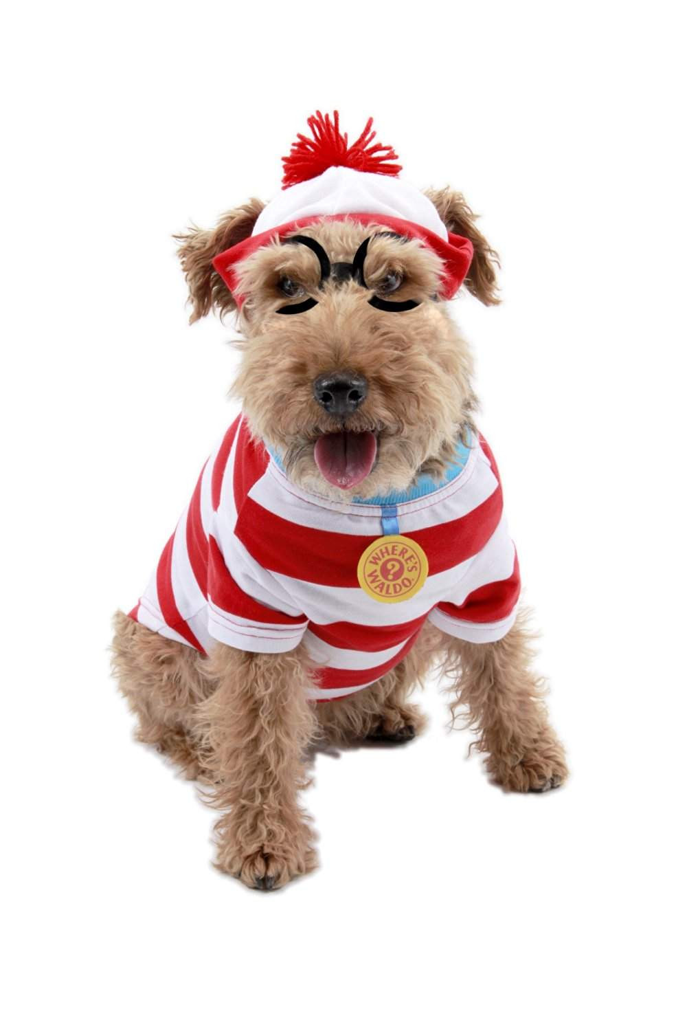 Best ideas about DIY Costumes For Dogs . Save or Pin Top 20 Best Cute Dog Costumes for Halloween in 2017 Now.