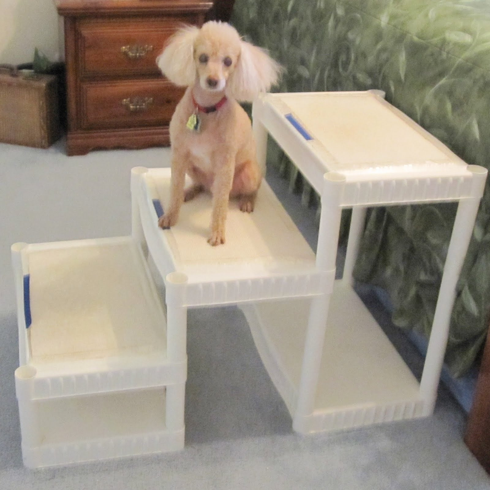 Best ideas about DIY Dog Stairs . Save or Pin Always Learning Stuff DIY Tall Dog Stairs for about $40 Now.