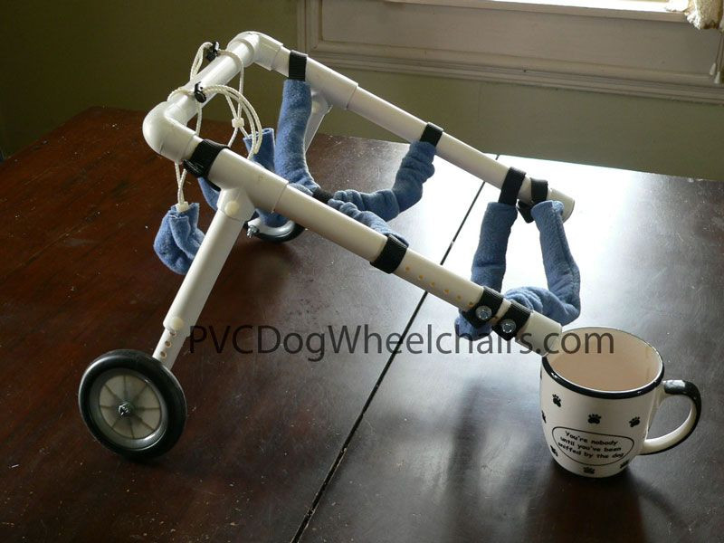 Best ideas about DIY Doggie Wheelchair . Save or Pin pvc dog wheelchair Information Now.