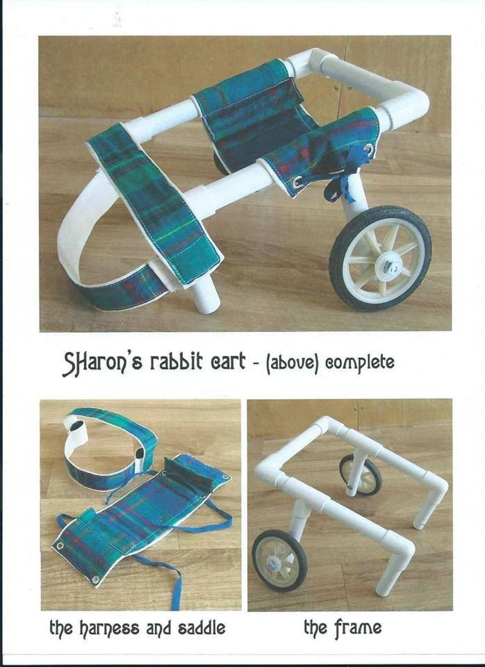 Best ideas about DIY Doggie Wheelchair . Save or Pin 17 Best images about wheelchairs on Pinterest Now.
