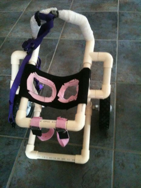 Best ideas about DIY Doggie Wheelchair . Save or Pin Dog Wheelchair Pets Now.