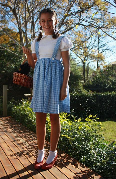 Best ideas about DIY Dorothy Costume No Sew . Save or Pin Dorothy Costume Dress – Sewing Projects Now.