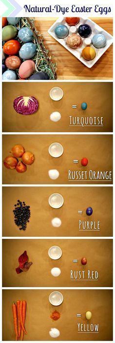 Best ideas about DIY Egg Dye . Save or Pin 1000 ideas about Egg Dye on Pinterest Now.