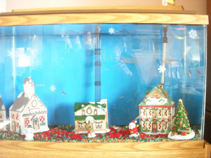 Best ideas about DIY Fish Tank Decor . Save or Pin DIY Fish Tank Christmas Decor petdiys Now.