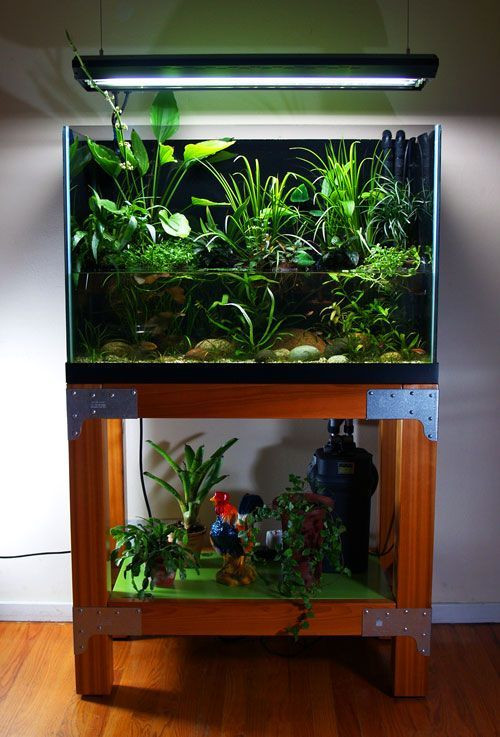 Best ideas about DIY Fish Tank Decor . Save or Pin Best 20 Fish tank stand ideas on Pinterest Now.