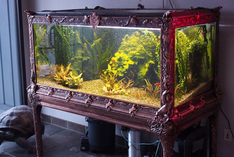 Best ideas about DIY Fish Tank Decor . Save or Pin 50 Best DIY Aquarium Decorations Ideas meowlogy Now.