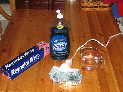 Best ideas about DIY Flea Trap . Save or Pin How to make your own flea trap Now.