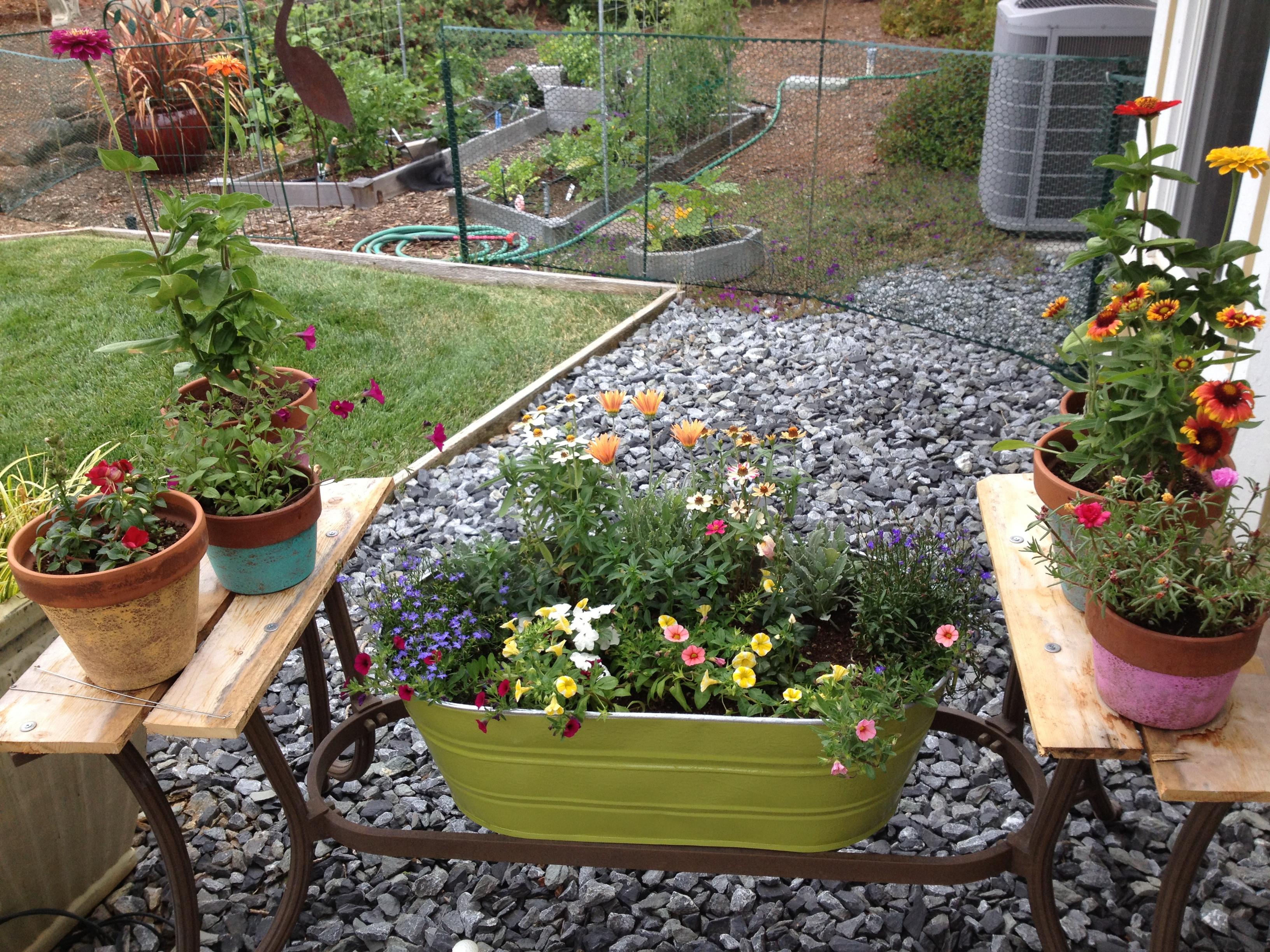 Best ideas about DIY Flower Garden . Save or Pin DIY Structured Flower Garden Dandelion Women Now.