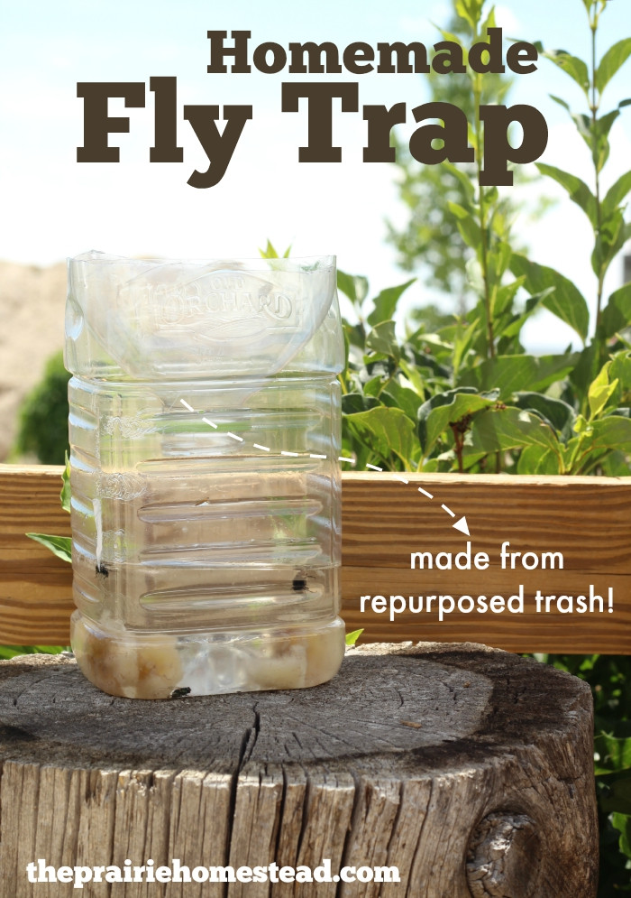 Best ideas about DIY Fly Killer . Save or Pin Homemade Fly Trap Now.