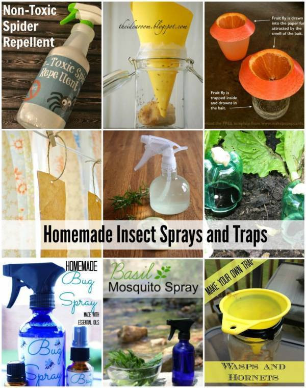 Best ideas about DIY Fly Spray . Save or Pin Homemade Insect Sprays and Traps That Actually Work – Home Now.