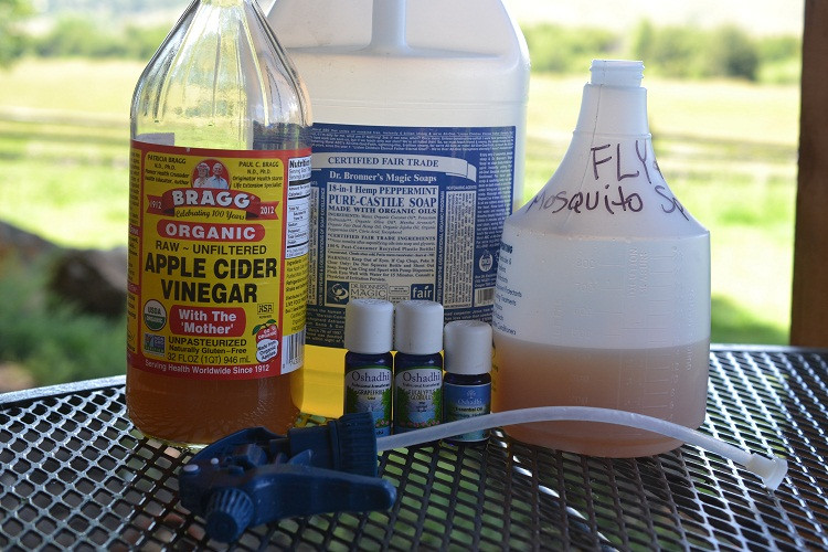 Best ideas about DIY Fly Spray . Save or Pin Homemade Natural Bug Repellent Recipes Going EverGreen Now.