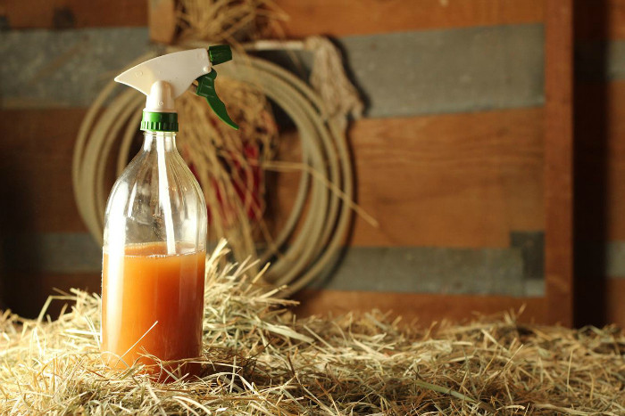 Best ideas about DIY Fly Spray . Save or Pin Homemade Fly Spray Recipe Now.
