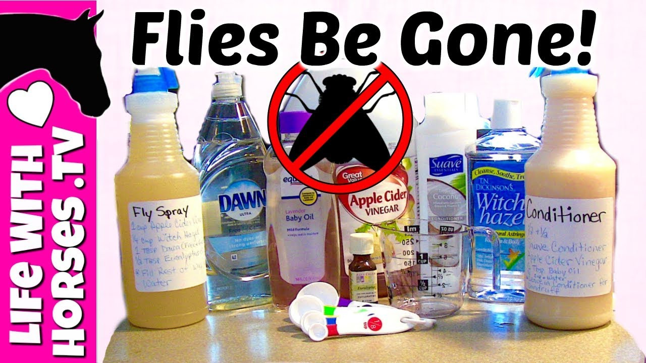Best ideas about DIY Fly Spray . Save or Pin DIY Fly Spray Recipe Now.