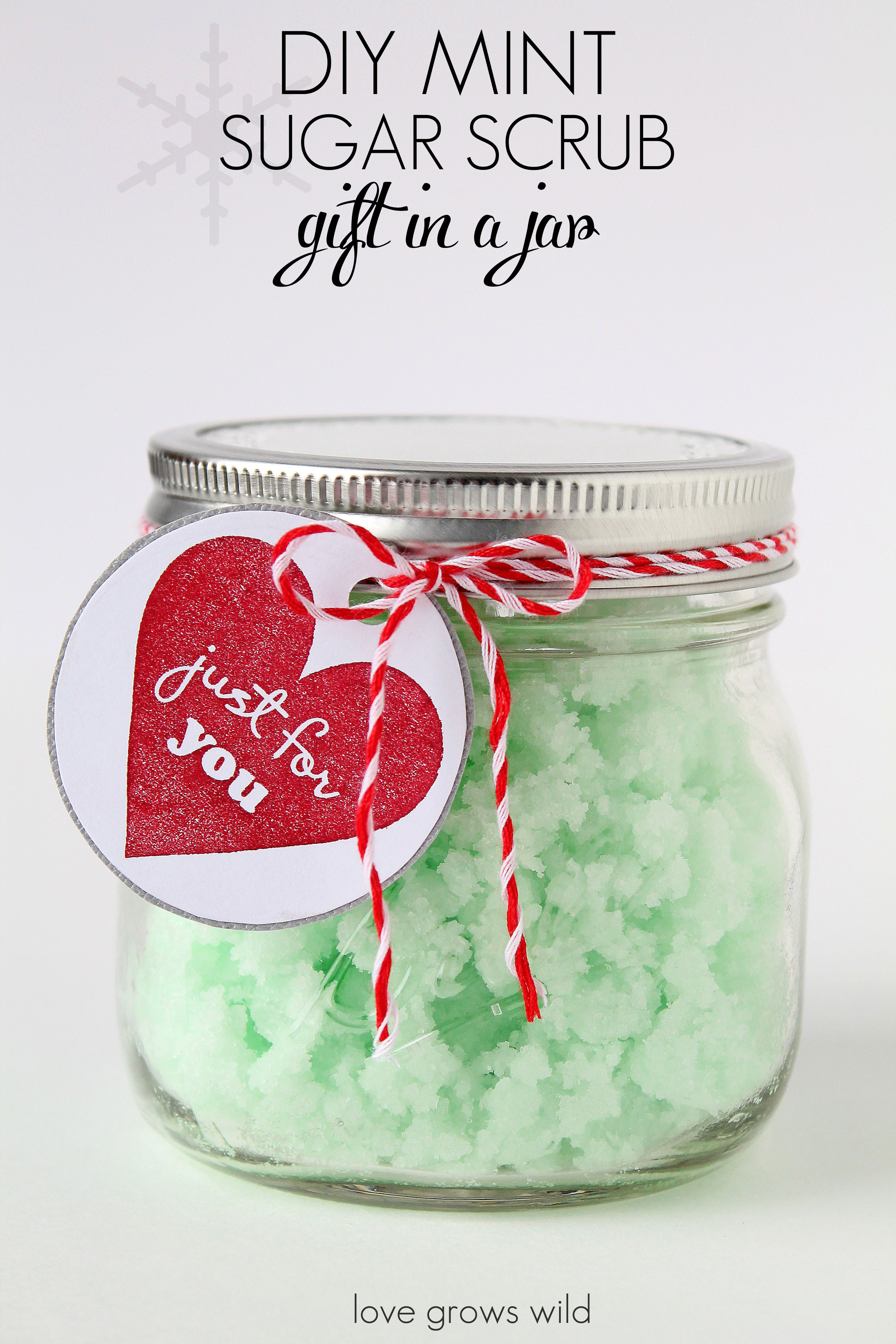 Best ideas about DIY Gifts In A Jar . Save or Pin 5 Fun Mason Jar Gift Ideas Love Grows Wild Now.