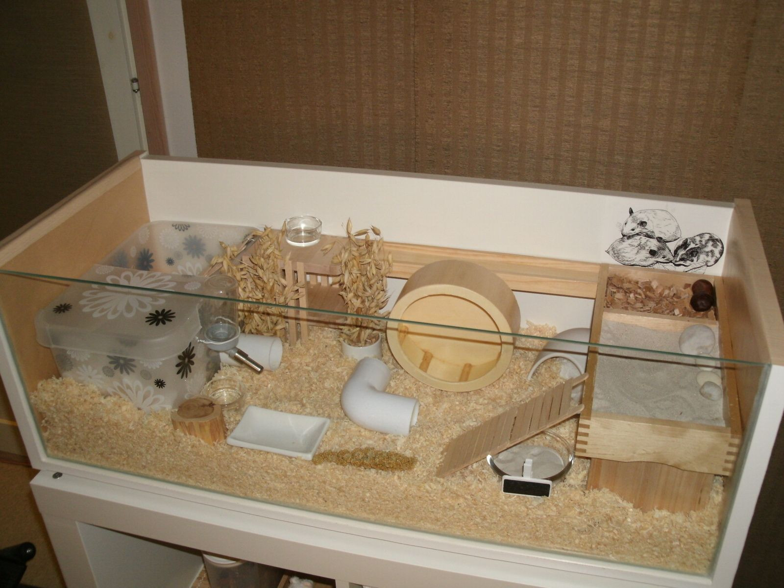 Best ideas about DIY Hamster Cage . Save or Pin Best 25 Hamster cages ideas on Pinterest Now.