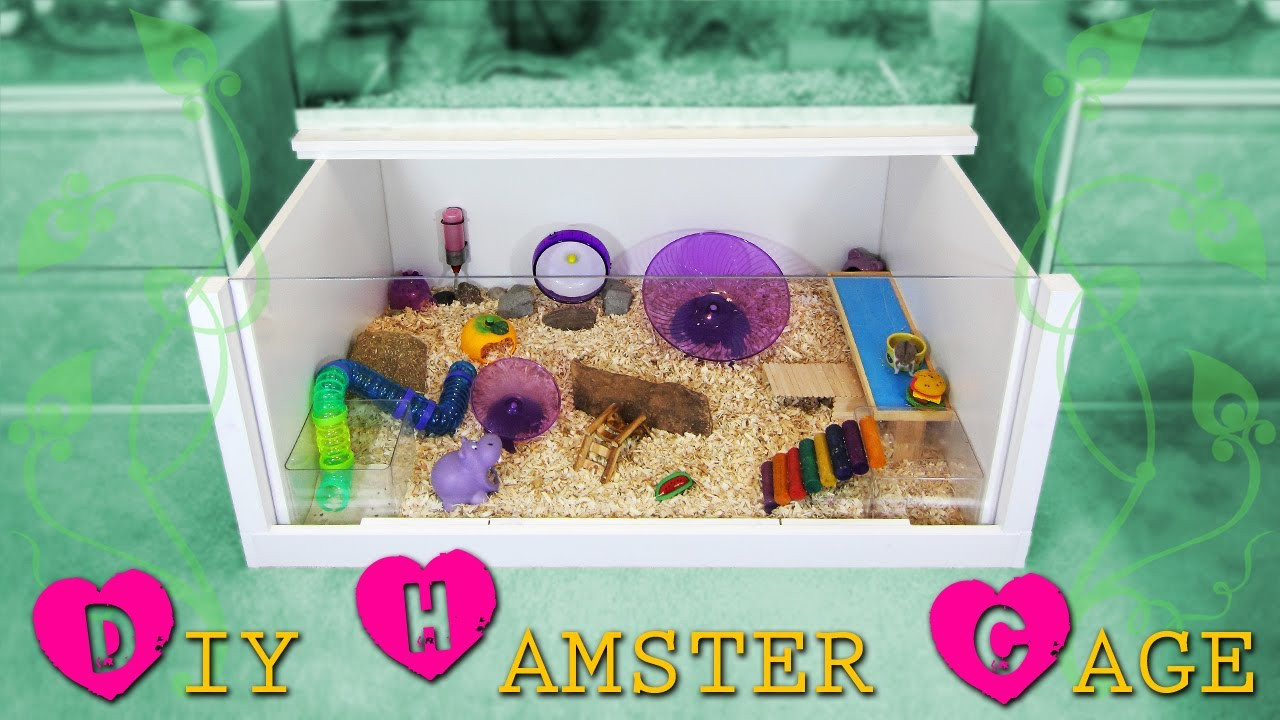 Best ideas about DIY Hamster Cage . Save or Pin How to build a DIY hamster cage Instructions Now.