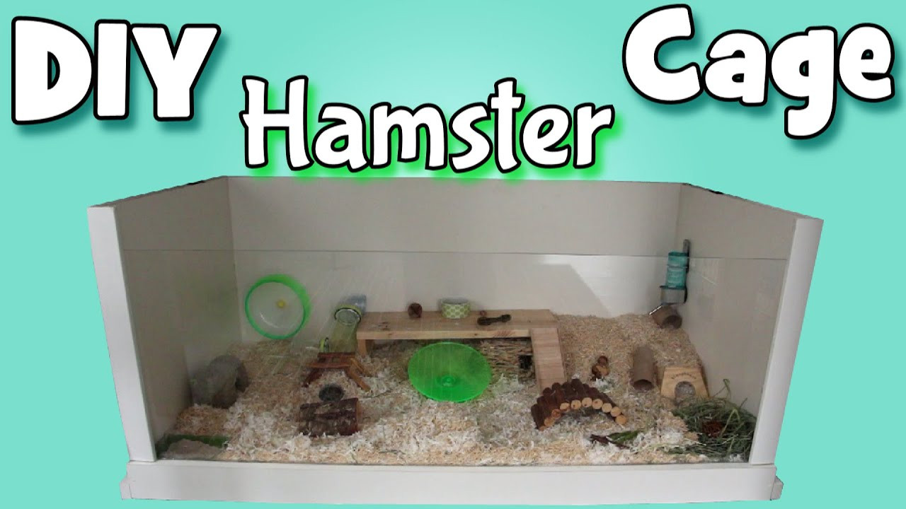 Best ideas about DIY Hamster Cage . Save or Pin Building My DIY Hamster Cage Now.