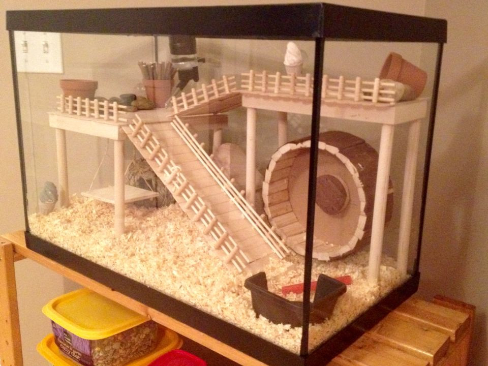 Best ideas about DIY Hamster Cage . Save or Pin Hamster Cage DIY aquarium conversion … Now.
