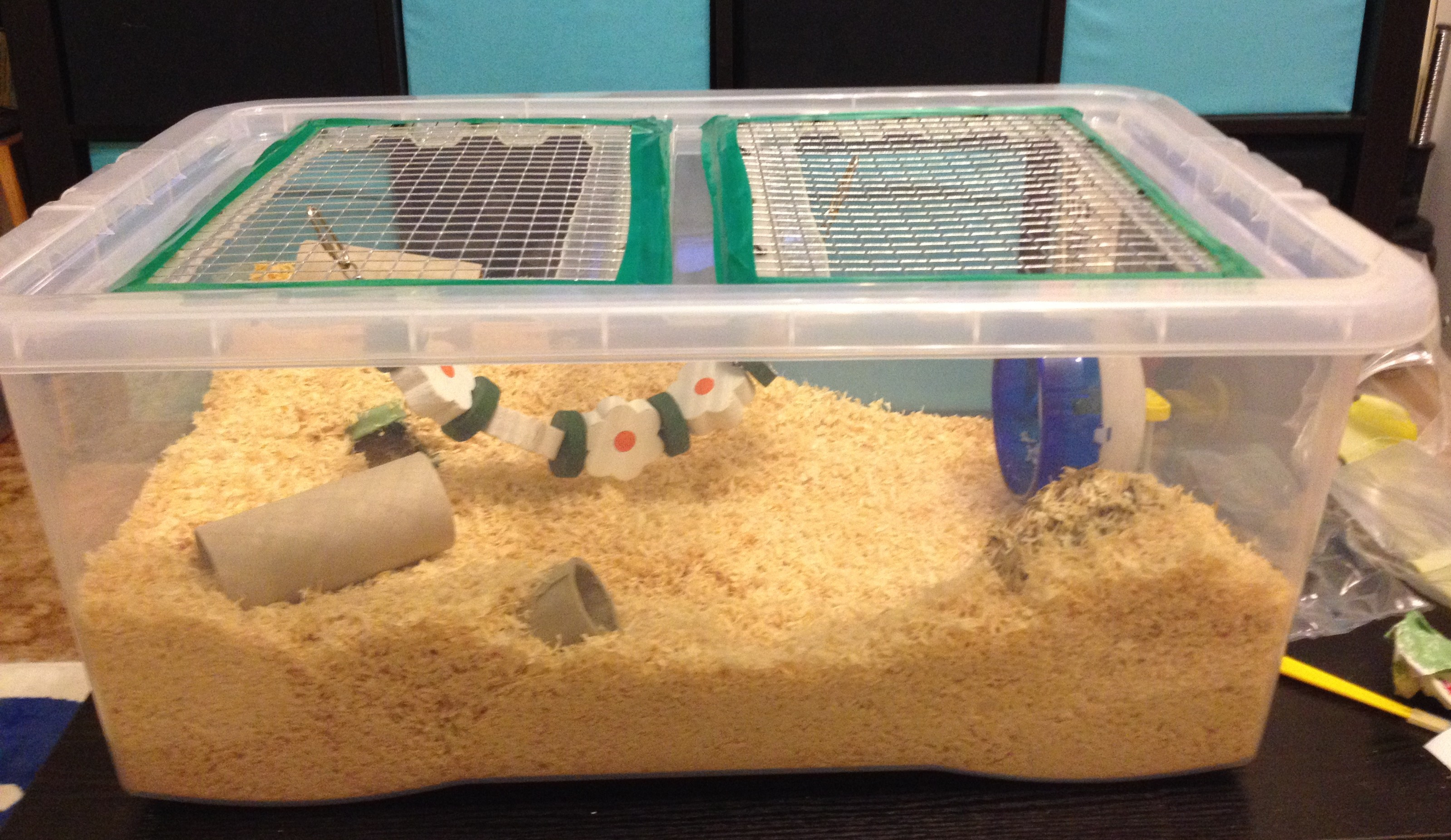 Best ideas about DIY Hamster Cage . Save or Pin Make a hamster cage thehamsterhut Now.