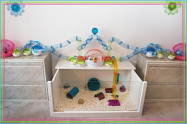 Best ideas about DIY Hamster Cage . Save or Pin DIY cages with instructions Supplies & Accessories Now.