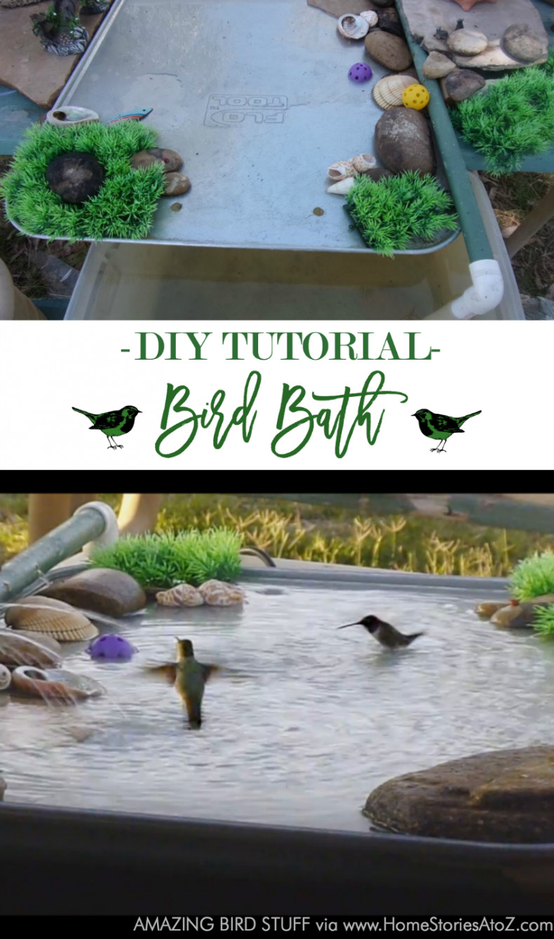 Best ideas about DIY Hummingbird Bath . Save or Pin DIY Bird Bath Now.