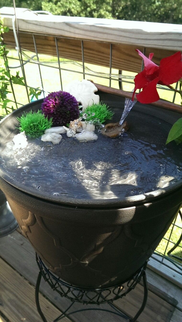 Best ideas about DIY Hummingbird Bath . Save or Pin Hummingbird bath diy Garden Now.