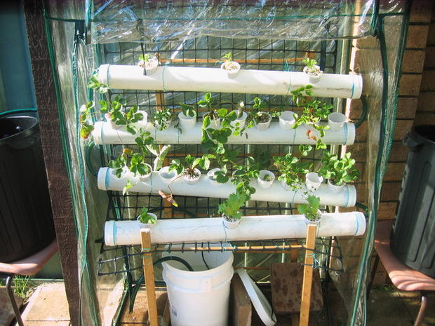 Best ideas about DIY Hydroponic Systems Plans . Save or Pin DIY Hydroponics Now.