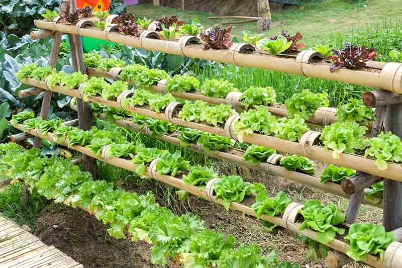 Best ideas about DIY Hydroponic Systems Plans . Save or Pin 16 Easy DIY Hydroponic Plans You Can Build in Your Garden Now.