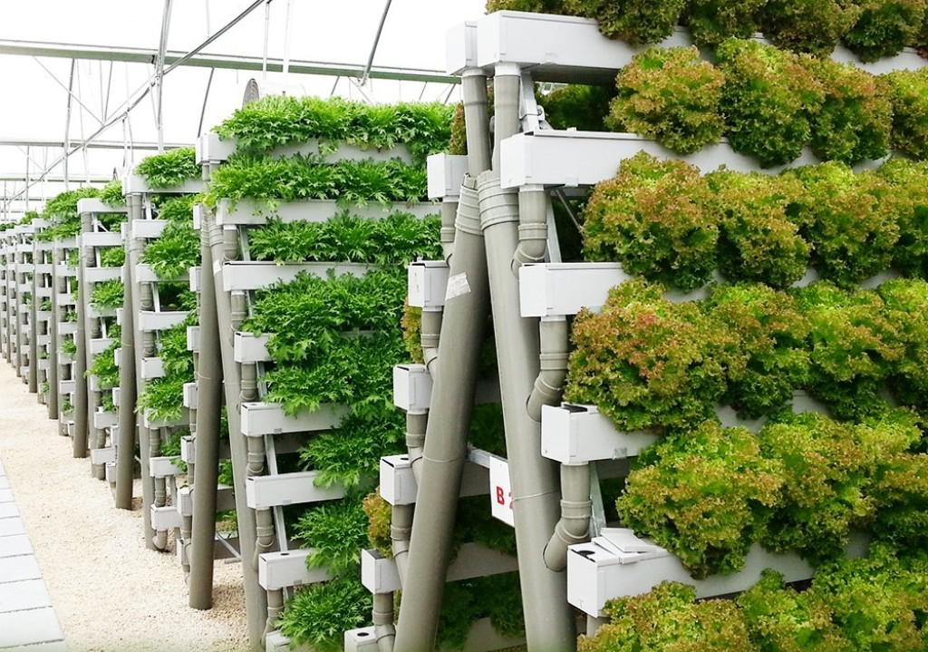 Best ideas about DIY Hydroponic Systems Plans . Save or Pin How to DIY Hydroponics — Harper Noel Homes Now.
