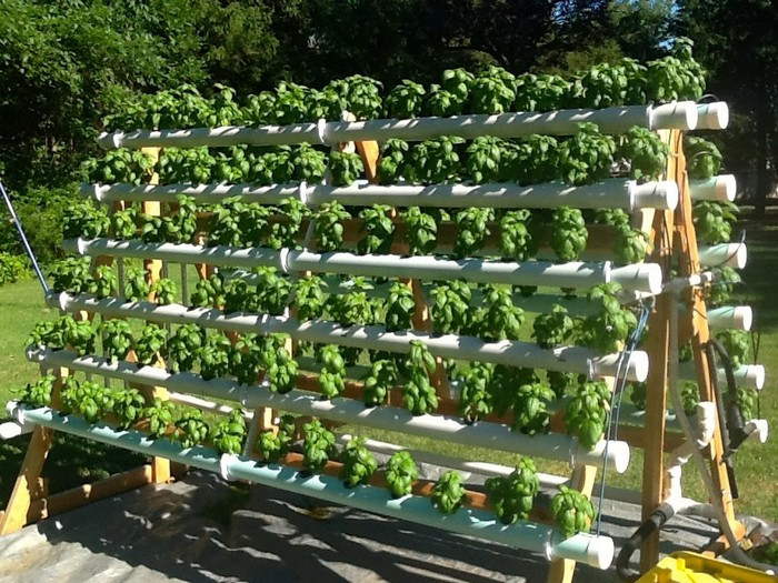 Best ideas about DIY Hydroponic Systems Plans . Save or Pin Build an Efficient A Frame Hydroponic System Now.