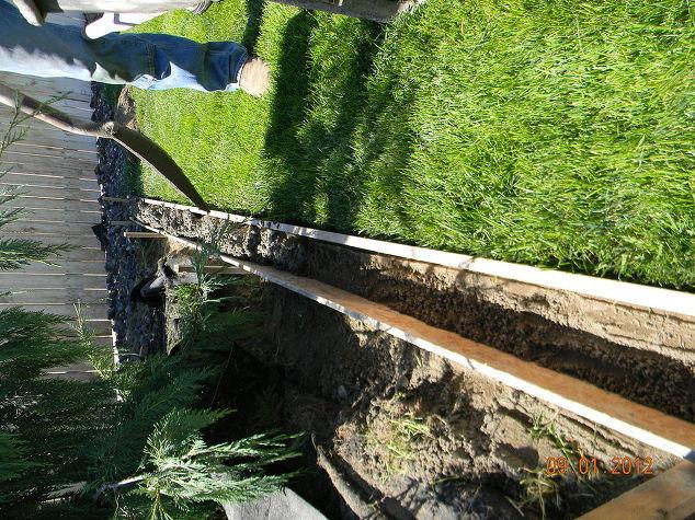 Best ideas about DIY Landscape Curbing . Save or Pin DIY Concrete Landscape Edging Now.