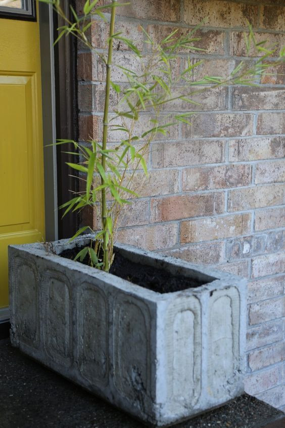 Best ideas about DIY Large Planters . Save or Pin Best 25 concrete planters ideas on Pinterest Now.