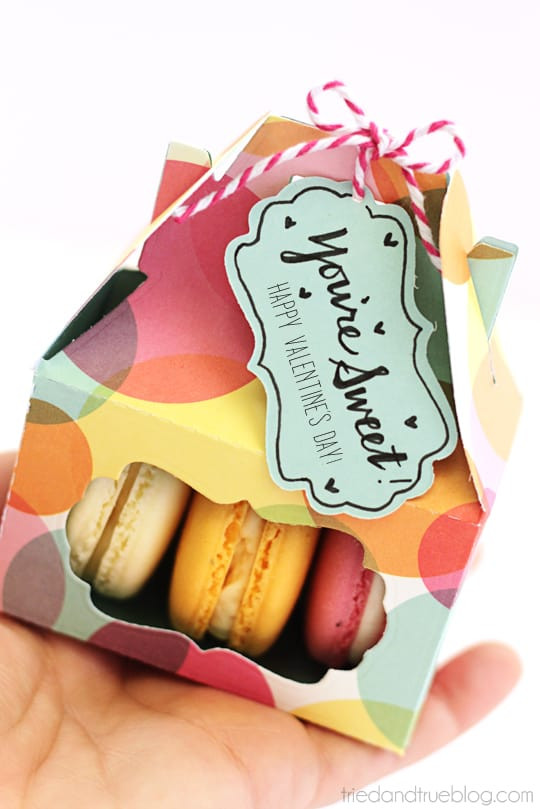 Best ideas about DIY Macaron Box . Save or Pin Valentine s Day Macaron Gift Box Tried & True Now.