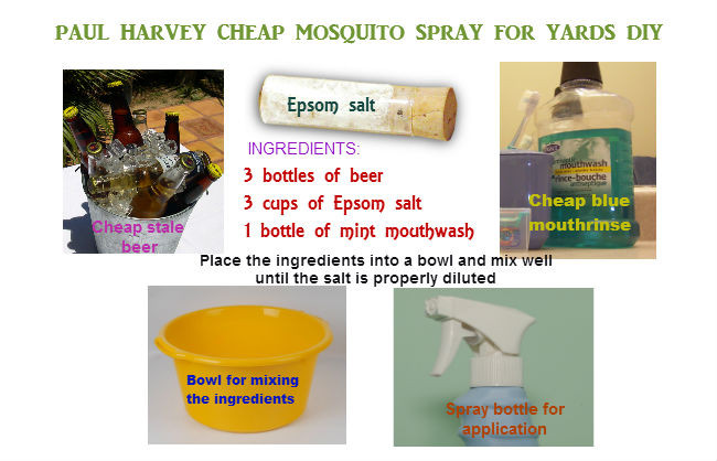 Best ideas about DIY Mosquito Yard Spray . Save or Pin Homemade mosquito yard spray is cheap effective and easy Now.