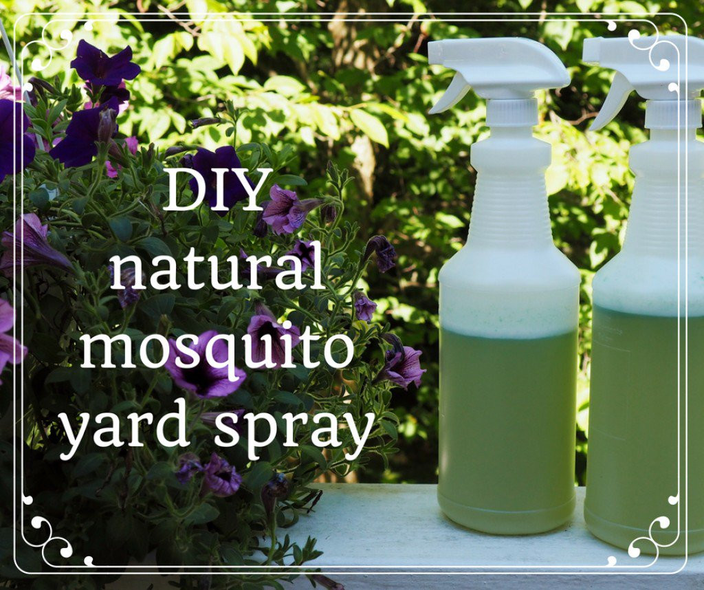 Best ideas about DIY Mosquito Yard Spray . Save or Pin How to Make Homemade Organic Mosquito Yard Spray Now.