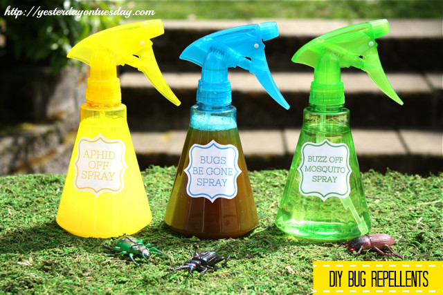 Best ideas about DIY Mosquito Yard Spray . Save or Pin Insect Repelling Solutions Now.