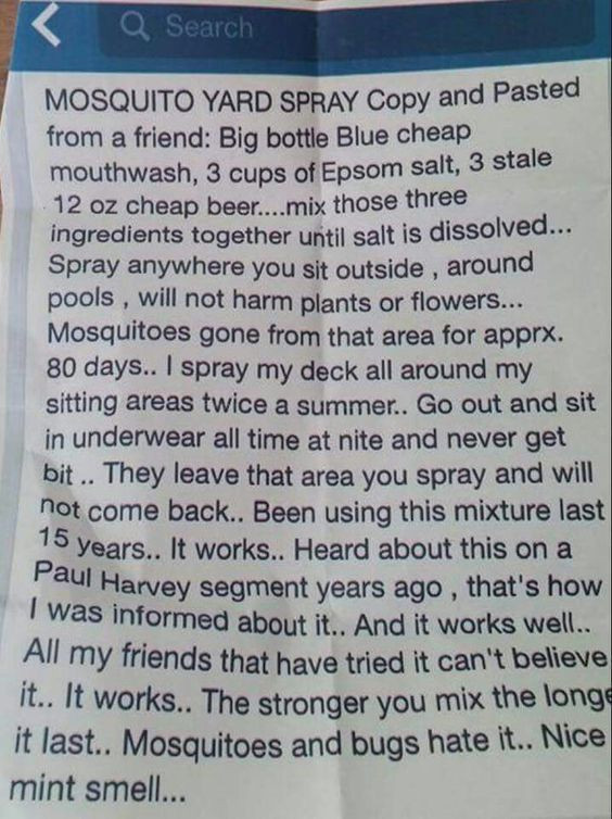 Best ideas about DIY Mosquito Yard Spray . Save or Pin Gardens Home and Homemade on Pinterest Now.